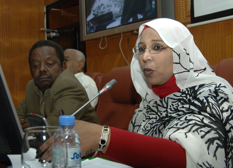 Cabinet organizes forum on  Demographic Return  in Sudan